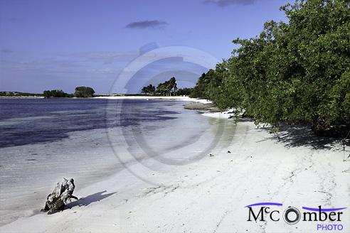 Untouched white sand beach near Santa Maria, Cuba