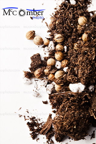 Coriander seeds and fertile soil