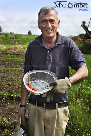 Senior farmer shows his first strawberries