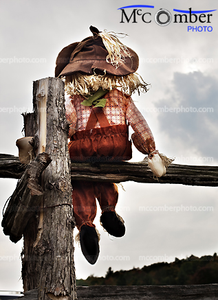 Doll sitting on the fence