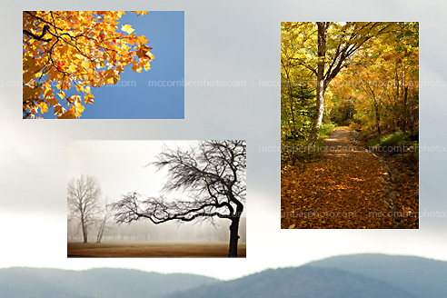 New Stock Photo Gallery - Autumn Landscapes