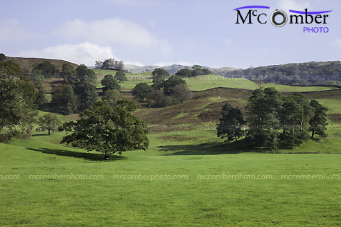 Stock Photograph - Rolling English Hills