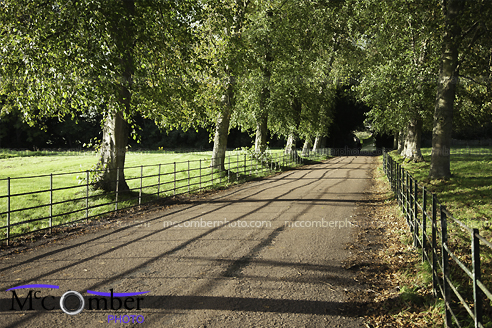 Stock Photo - Fenced English Country Road