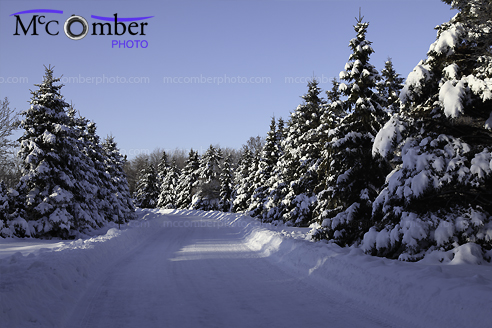 Stock Image: Snowbound Canadian Winter Road